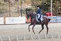 Medalist marina aframeeva horse named vosk international dressage in international park rus vivat russia orlovo moscow region Stock Photo