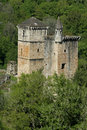 Mediaval castle in forest Royalty Free Stock Images