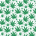 Medical cannabis seamless texture. Hemp background. wallpaper. Vector illustration Royalty Free Stock Photo