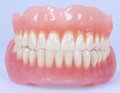 Medical denture jaws this high quality image represents Stock Images