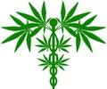 Medical Marijuana Plant Caduceus Royalty Free Stock Photo