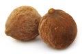 Medicinal Bahera fruits of India Royalty Free Stock Images