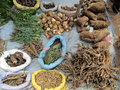 Medicinal herbs dealer some in a weekly market in morocco Stock Photos