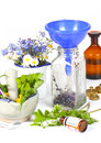Medicinal herbs homeopathy with and globules Royalty Free Stock Image