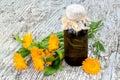 Medicinal plant calendula and pharmaceutical bottle Royalty Free Stock Photo