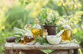 Medicinal plants and oils for massage Royalty Free Stock Photo