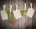 Medicine herbs and paper attach to rope with clothes pins on wooden background Stock Photos