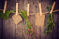 Medicine herbs and paper attach to rope with clothes pins on wooden background Royalty Free Stock Photography