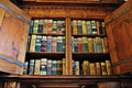Medieval Bookshelf Royalty Free Stock Image