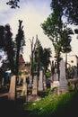 Medieval cemetery, Sighisoara, Transylvania