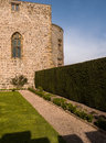 Medieval chirk castle in wales garden and trimmed english yew hedge taxus baccata at the welsh marches wrexham uk Royalty Free Stock Photo