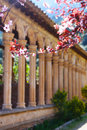 Medieval cloisters and cherry blossoms in front of in spain Stock Photos