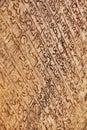 Stredoveký nápisy na kameň stena