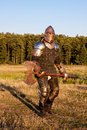 Medieval knight in the field with an axe Royalty Free Stock Images