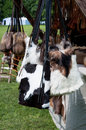 Medieval market bags stall handmade natural leather and fur at in lithuania Stock Images