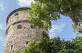Medieval tower in tallin mighty estonia Stock Photos