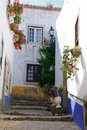 Medieval town of Obidos, Portugal