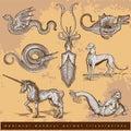 Medieval woodcut animal illustrations - set1