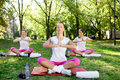 Meditation group women practicing yoga in park Stock Photo
