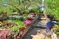Mediterranean garden Royalty Free Stock Photo