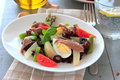 Mediterranean salad with anchovies and olives on the white plate Royalty Free Stock Image