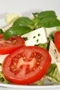 Mediterranean salad with tomato and herbs Royalty Free Stock Photo
