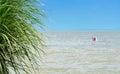 Mediterranean scene at Lake Balaton Royalty Free Stock Photo