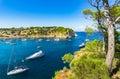 Mediterranean Sea Coast Bay of Portals Vells Majorca Spain Royalty Free Stock Photo