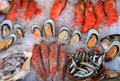 Mediterranean seafood display Stock Images
