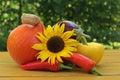 Mediterranean vegetables Royalty Free Stock Image