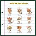 Medium sized feline illustrations with regular and scientific na