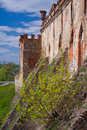 Medzhybizh cossack castle Royalty Free Stock Images