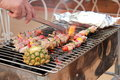 Meet bbq with vegetables on the dish Royalty Free Stock Photo