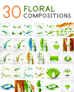 Mega collection of vector green leaf compositions Royalty Free Stock Photo