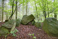 Megalithic tomb forst poggendorf an ancient in the forest near number in mecklenburg vorpommern germany the image was created Royalty Free Stock Images