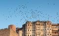 Mehrangarh fort in jodhpur birds flying over rajasthan india Stock Images
