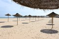 Meia praia lagos algarve portugal sun shades in a row at in europe Stock Photography
