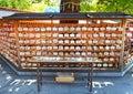 Meiji Jingu Shrine in Shibuya, Tokyo