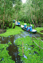 Mekong Delta, Tra Su indigo forest, ecotourism Royalty Free Stock Photo