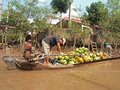 Mekong River, Coconut & Boat Royalty Free Stock Photo