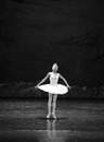 Melancholy linger at Lakeside-The Swan Lakeside-ballet Swan Lake Royalty Free Stock Photo