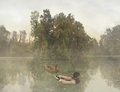 Melancholy scene two wild ducks swimming in a lake with trees in a beautiful foggy scenery Stock Photo