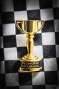 Melbourne cup pin on mens chequered fashion tie Royalty Free Stock Photo