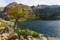 Melo lake the lac de in corsica france Royalty Free Stock Photos