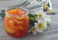 Melocotón albaricoque atasco de la nectarina Imagen de archivo