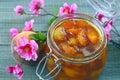 Melocotón albaricoque atasco de la nectarina Fotografía de archivo libre de regalías