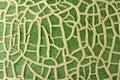 Melon Skin Texture Royalty Free Stock Photo
