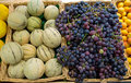Melons and grapes Stock Photography