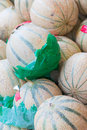 Melons in the market stall at the market Stock Photography