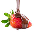 Melted chocolate pouring on fresh strawberry Royalty Free Stock Photo